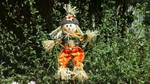 Scarecrows at Wray